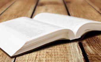 Beitrag-Publikation-books-writing
